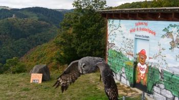 Permalink auf:Fotos vom Herbstferienprogramm